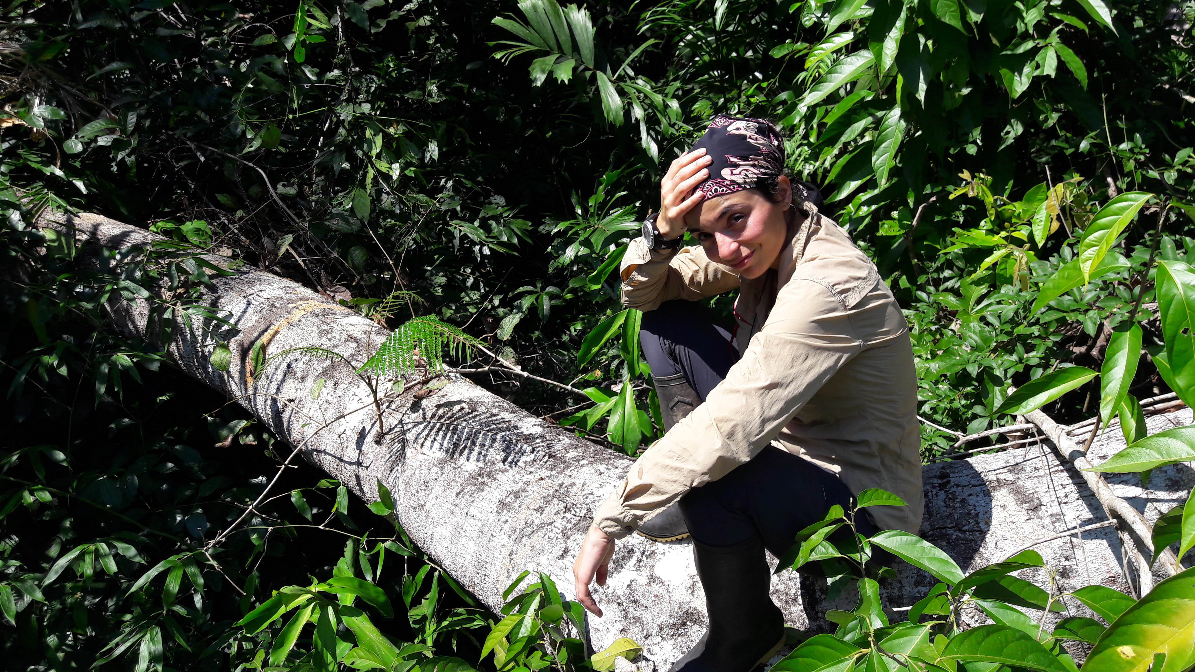 Graduate student, Belen Fadrique (Feeley Lab), explores forest dynamics in the Andes-Amazon region